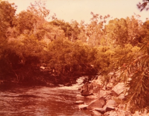Daintree River, 1983
